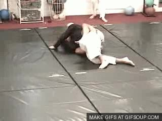 Watch Bjj GIF on Gfycat. Discover more related GIFs on Gfycat