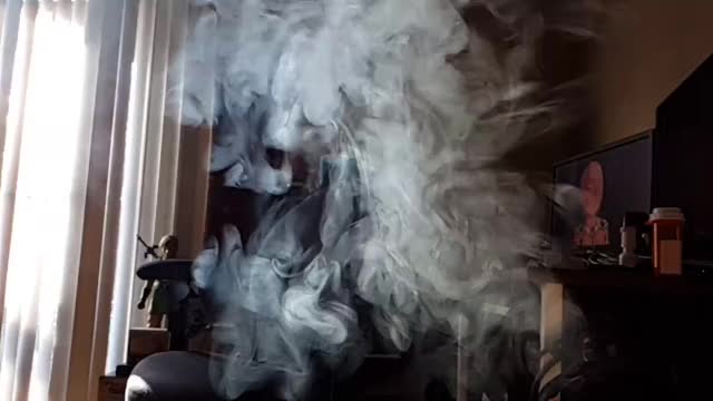 Watch Exhale GIF on Gfycat. Discover more trees, woahdude GIFs on Gfycat