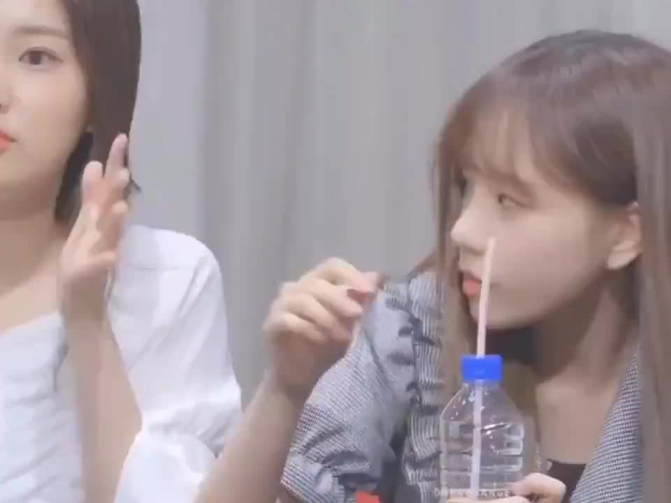 choi yena, hyewon, iz*one, izone, jo yuri, joyul, kang hyewon, kangchan, kwangbae, yena, yul, yuri, Kwangbae~Yuri~Yena GIFs