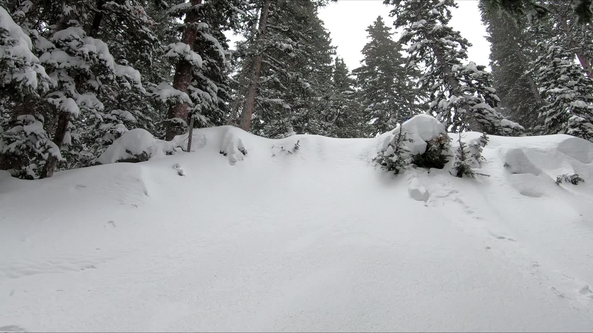 snow, snowboard, snowboarding, snowing,  GIFs