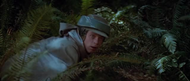 Watch this return of the jedi GIF by @mikearrow on Gfycat. Discover more return of the jedi, star wars, star wars return of the jedi GIFs on Gfycat