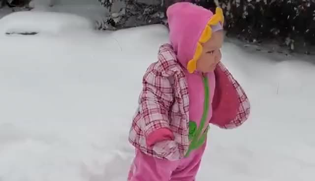 Watch and share Baby Face Plants In The Snow GIFs on Gfycat