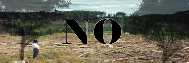 Watch No a la tala de árboles en la selva virgen de Bahia Solano GIF on Gfycat. Discover more related GIFs on Gfycat