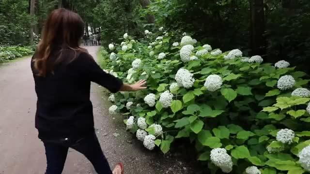 Watch and share Gardening GIFs and Beautiful GIFs on Gfycat