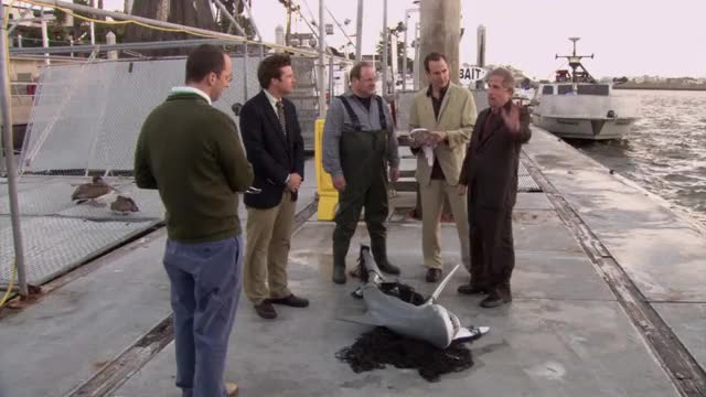 Watch and share Arrested Development GIFs by Falconbox on Gfycat