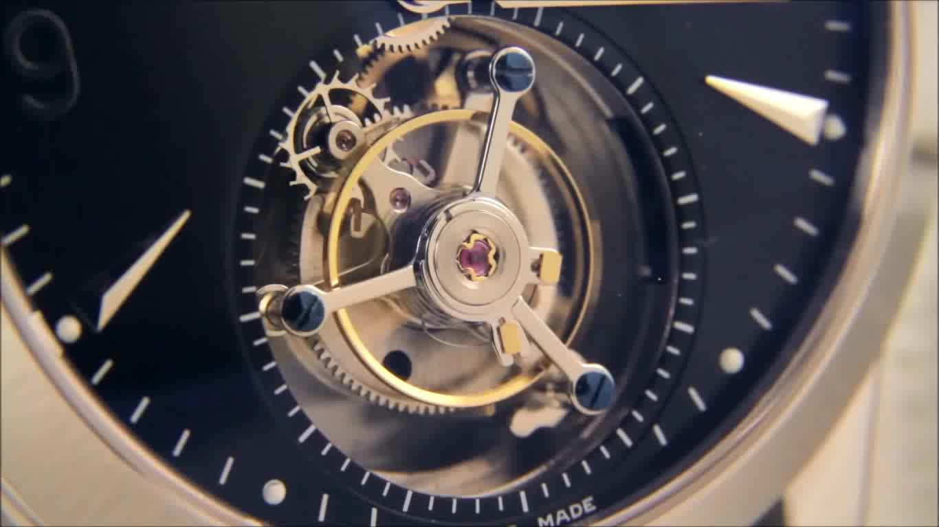 LivingBackgrounds, dreamscenepreview, watches, Shot of movement of a Seagull Flying Tourbillon GIFs