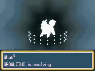 Watch GROWLITHE EVOLVE GIF on Gfycat. Discover more related GIFs on Gfycat