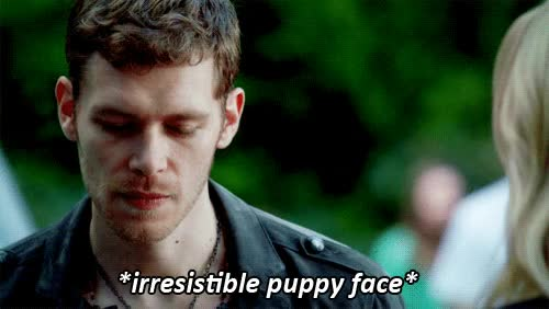 Watch bros before hoes GIF on Gfycat. Discover more joseph morgan GIFs on Gfycat
