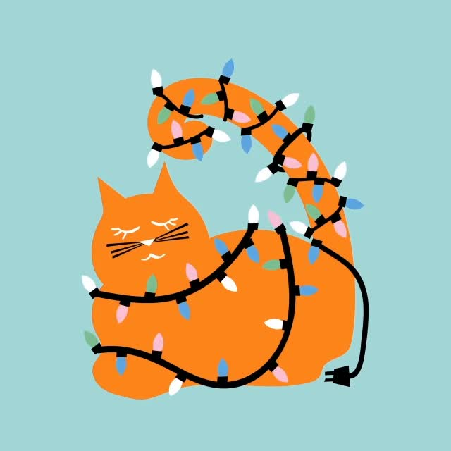 Watch this cat GIF by The GIF Smith (@sannahparker) on Gfycat. Discover more ali mac, cat, christmas, christmas lights, festive, holidays, kitty GIFs on Gfycat