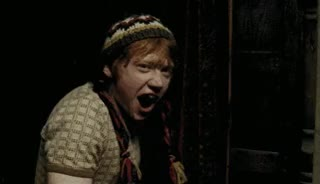 Watch bee GIF on Gfycat. Discover more rupert grint GIFs on Gfycat
