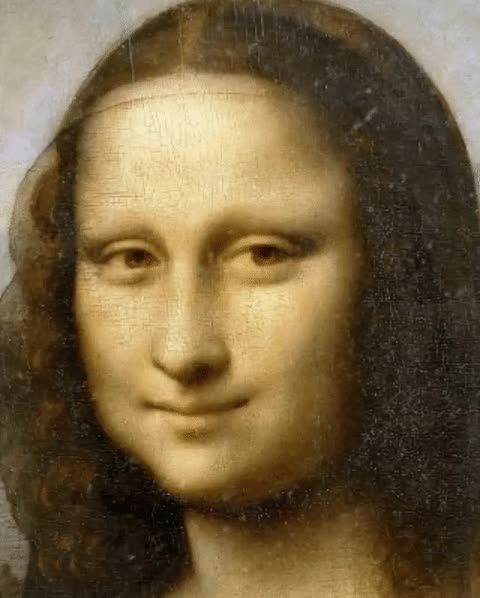Watch and share Mona Lisa GIFs on Gfycat