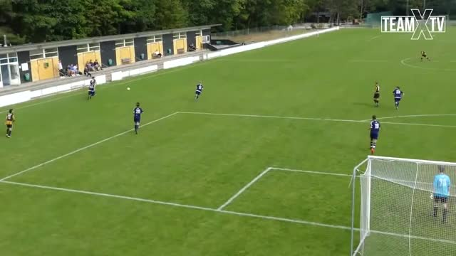 Watch and share Unbelievable Zlatan Ibrahimovic-esque Overhead Kick Scored In The Danish Amateur Match GIFs on Gfycat