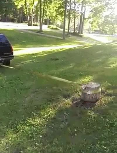 stump-removal.gif GIFs