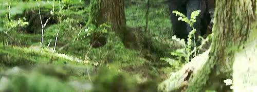 Watch and share Bellamy Blake GIFs and John Murphy GIFs on Gfycat