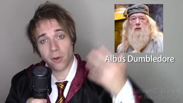 Watch and share Gryffindor GIFs and Impression GIFs on Gfycat