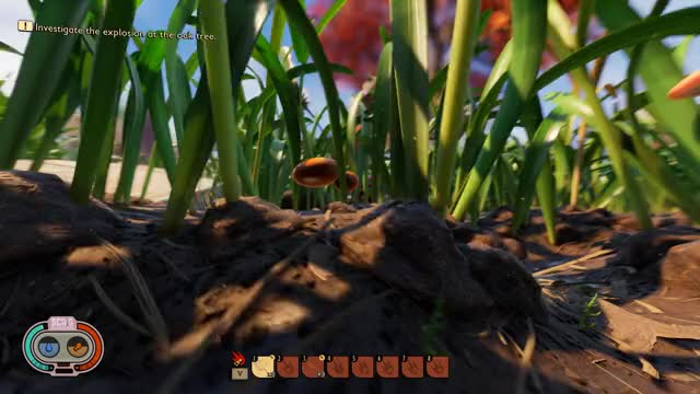 Watch and share Grounded Spider GIFs by pcgemma on Gfycat