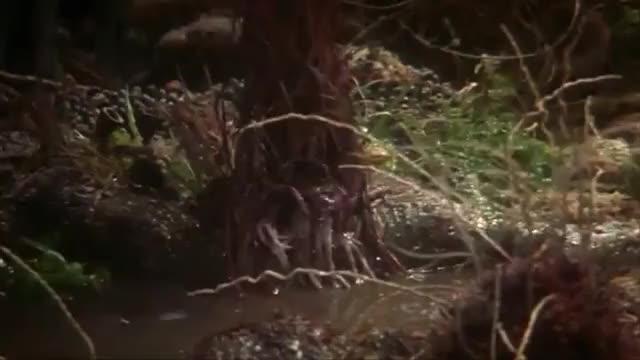 Watch and share The Dark Crystal Gif Dump GIFs on Gfycat