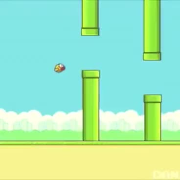 Mother fucker flappy bird GIFs