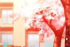 Watch Arima Kousei, I love you. I love you. I love you. I'm sorry  GIF on Gfycat. Discover more *swknu, arima kousei, mine, miyazono kaori, mygifs, shigatsu wa kimi no uso, such a beautiful series GIFs on Gfycat