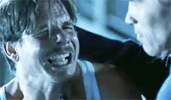 Watch Laugh until you're crying and your ribs hurt. GIF on Gfycat. Discover more allmoviegifs, arnold schwarzenegger, art malik, bill paxton, charleton heston, eliza dushku, favorites, filmgifs, grant heslov, jlc, mil, milgifs, my gifs, tia carrere, tom arnold, true lies GIFs on Gfycat