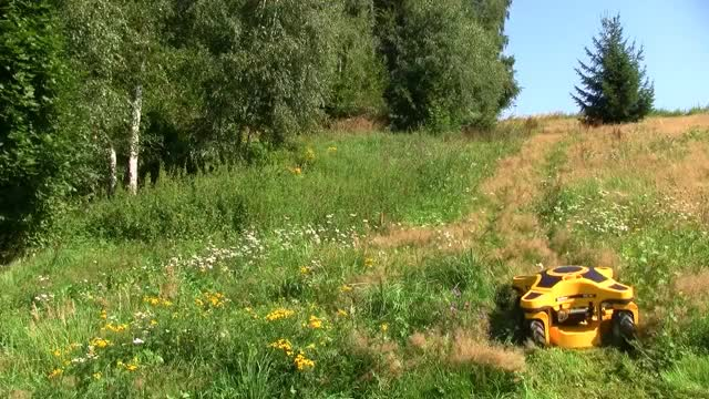 Watch Who cuts the grass in the ZA? GIF on Gfycat. Discover more All Tags, Apocalyptic, Backyard, Field, amazing, cut, efficient, grass, green, invention, lawn, machine, mini, mower, robot GIFs on Gfycat