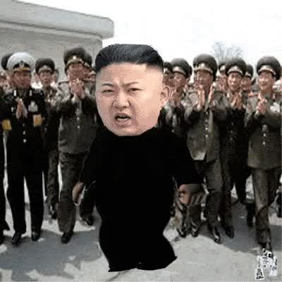 Watch and share Kim Jong animated stickers on Gfycat