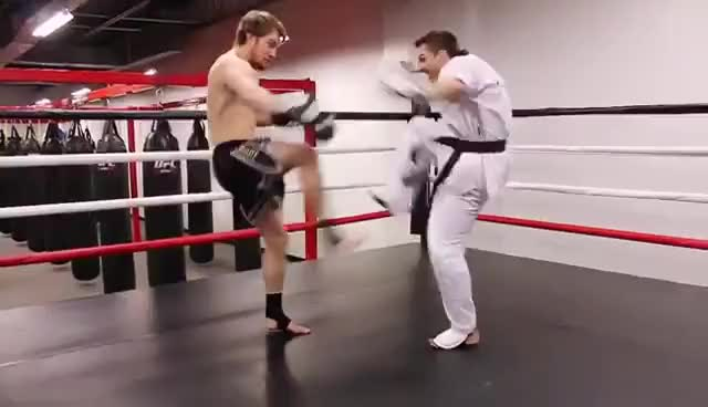 Watch Taekwondo vs Muay GIF on Gfycat. Discover more related GIFs on Gfycat