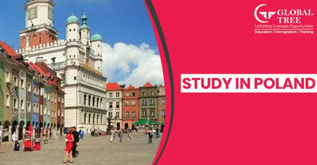 Watch and share Study In Poland GIFs by Joy on Gfycat