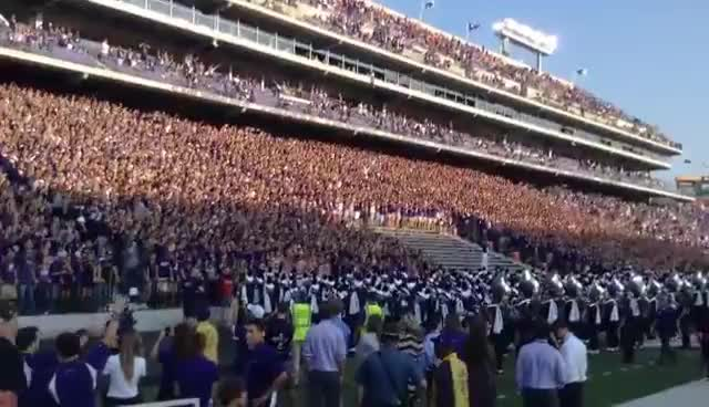 BillSnyderFamilyStadium, Football, KSU, KState, K-State Wildcat Football Fans GIFs