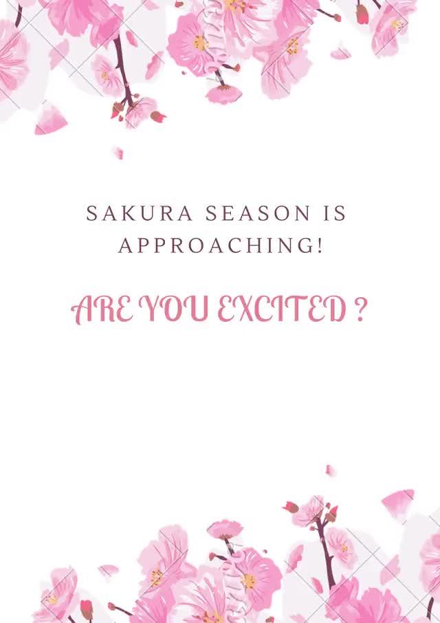 Watch and share It'S Sakura Season! animated stickers on Gfycat