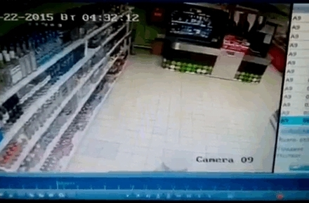 A cat trashing a convenience store • r/AnimalsBeingJerks GIFs