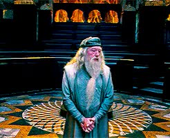 Watch and share Albus Dumbledore Puts Hands Out On Hips Harry Potter GIFs on Gfycat