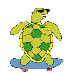 awesome, cool, kewl, look human, rad, radical, turtle, Turtley Radical GIFs