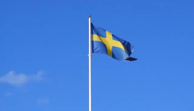 Watch and share Svenska Flaggan GIFs on Gfycat