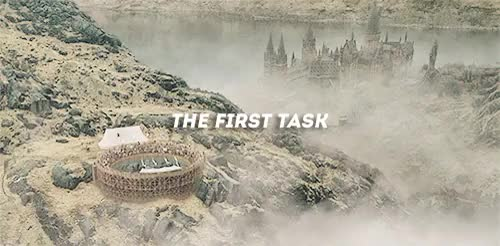 Watch The Three Tasks (insp) GIF on Gfycat. Discover more 1k, dailypotter, gifs, hp, hpedit, hpgif, idek, mine, simplypotterheads GIFs on Gfycat