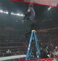 Watch and share Hardy Jeff Hardy Autoplay Bubba Ray Dudley Ladder Leg Drop Matt Hardy Royal Rumble Table GIFs on Gfycat