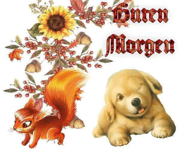 Watch and share Guten Morgen Bilder Für Facebook animated stickers on Gfycat