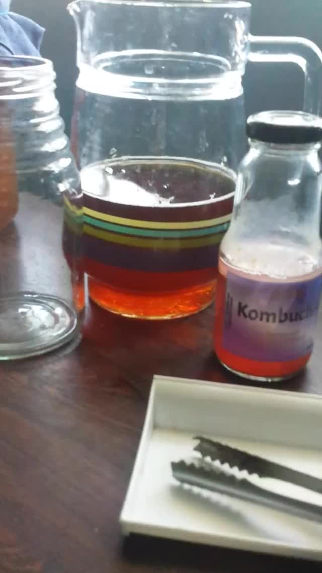 Watch and share Flavored Kombucha As Starter GIFs by Charlie Columna on Gfycat