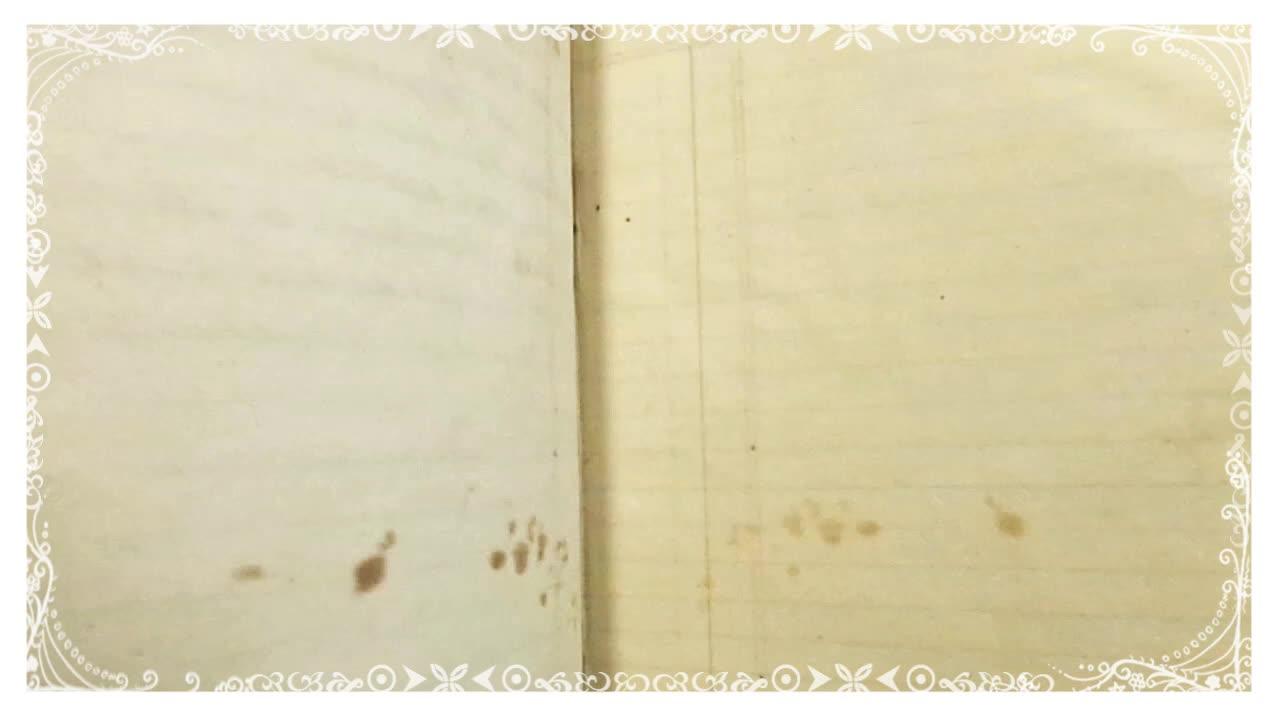 1829, caligraphy, diary, ephemera, handwriting, ledger, old, 1829 OLD DIARY/ LEDGER / EPHEMERA GIFs