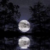 Watch and share Moon Gif Photo: Moon Gif Moon1.gif GIFs on Gfycat