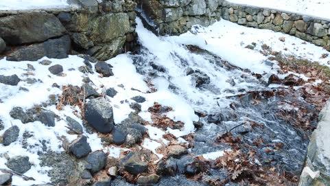 Frozen Waterfall  • r/NatureGifs GIFs