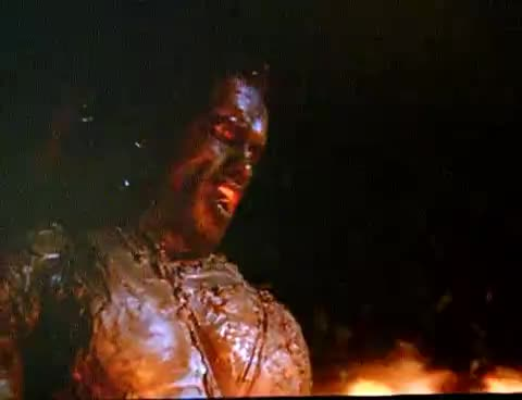 arnold schwarzenegger, predator, scream, Arnold Scream GIFs