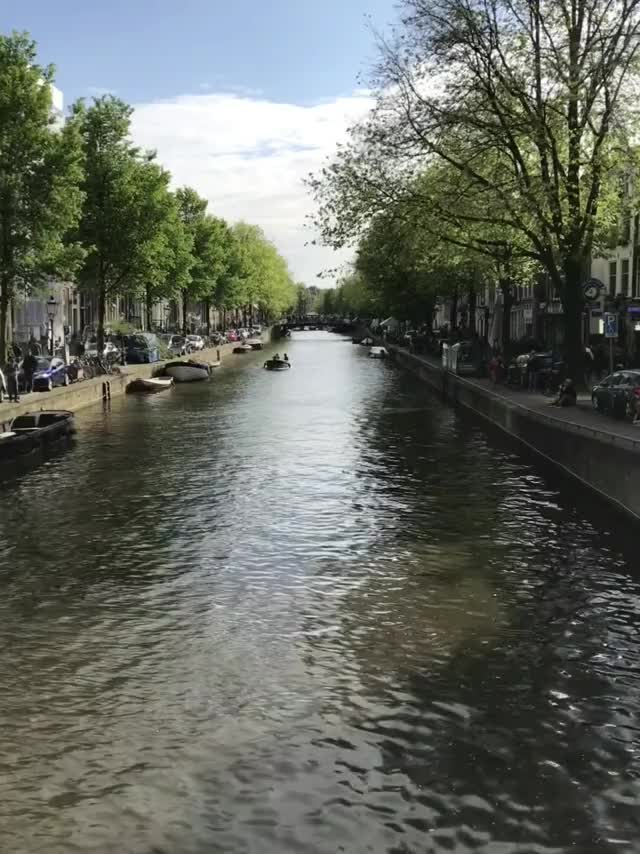Watch and share Netherlands GIFs and Amsterdam GIFs by sarahjiffy on Gfycat