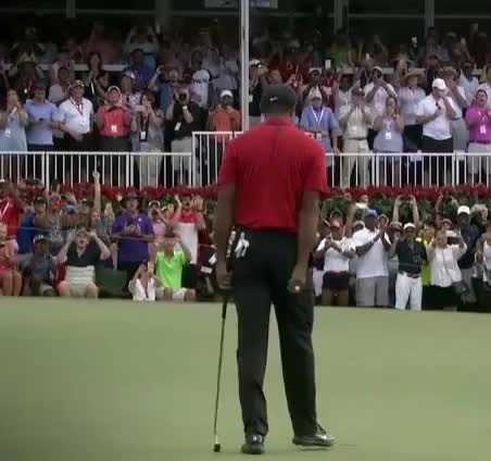 Watch and share Tiger Woods GIFs by GIF Brewery Developer on Gfycat