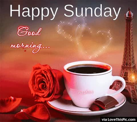 Watch and share Good Morning Happy Sunday Coffee Quote GIFs on Gfycat