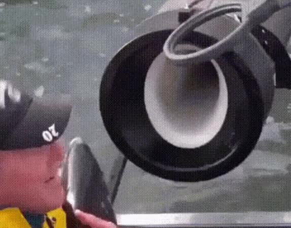 Watch and share 2019-08-12 16-30-21 GIFs on Gfycat