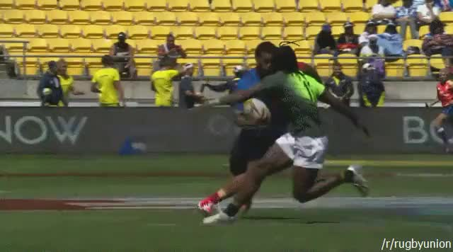 Watch and share Rugbyunion GIFs by dumadent on Gfycat
