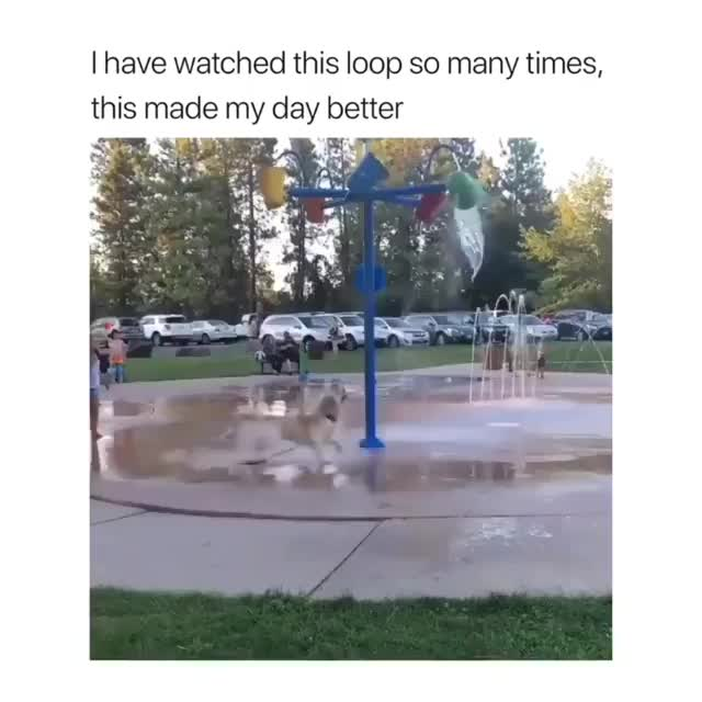 Watch and share 2019-09-05 21.10.32 2126282146948522929 6074966892 GIFs by Ly Ly on Gfycat