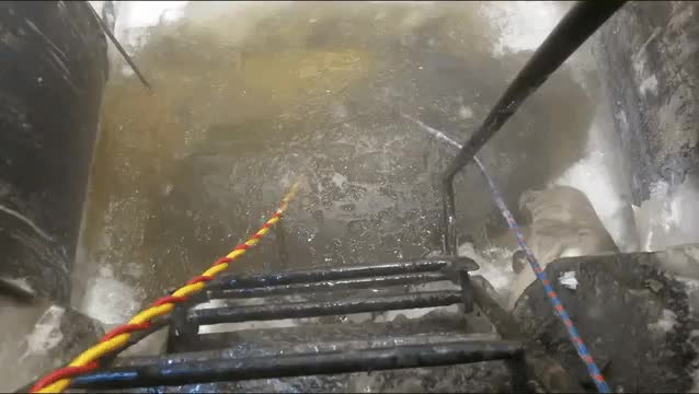Seal waves hello to a deep sea welder as they resurface GIFs
