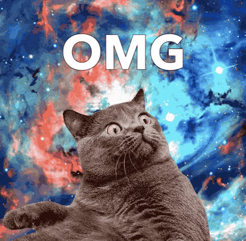 cat, epic, god, my, no, oh, omg, surprised, unbelievable, way, wtf, OMG GIFs